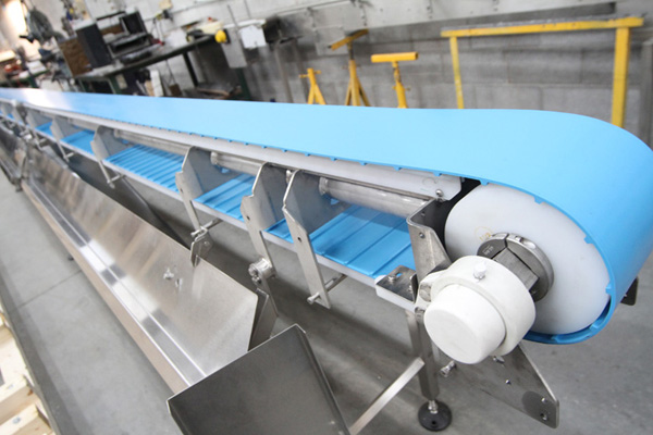 Hygienic Conveyor Belt